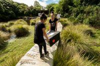 Students carry moth traps into Bushy Park Sanctuary