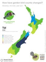 Regional picture: changes in tūī counts