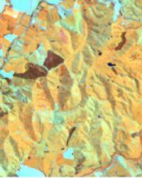 Multi-spectral Landsat image pan-sharpened image at 15-m pixel resolution