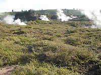 Heated ground (Susan Wiser)
