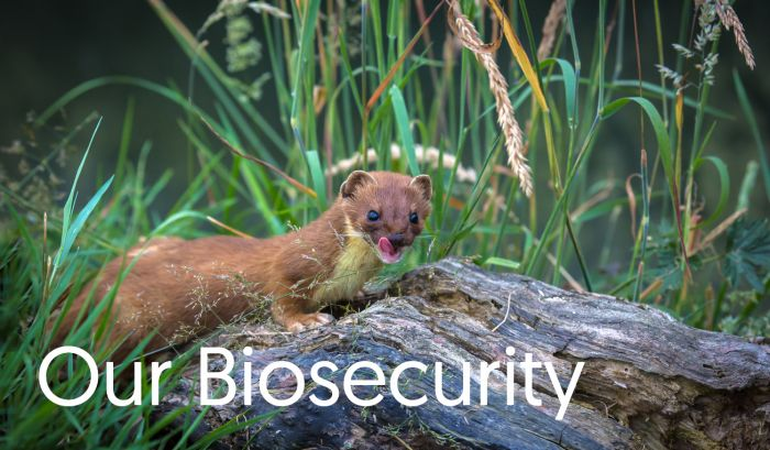 Our Biosecurity
