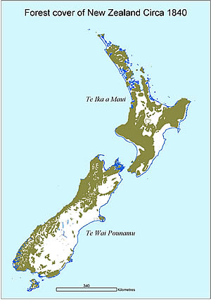 Forest cover of New Zealand circa 1840.