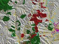 Extract from EcoSat basic land cover of Manawatu/Wanganui region
