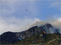 A 2011 fire at a rocky outcrop at Hinewai Reserve on Banks Peninsula
