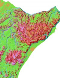 Soil Map of Southern Hawkes Bay.
