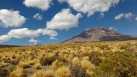The Atacama Desert is now a dry barren landscape, but the region experienced wetter conditions during a period 17,500 to 8,500 years ago