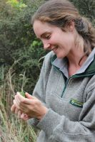 DOC ranger, Sasha Roselli, taking great delight in the beauty of a Jewelled gecko before releasing it.