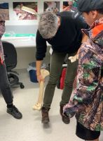 Janet Wilmshurst teaching rangatahi about a moa fossil