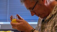 Robert Hoare examines a specimen