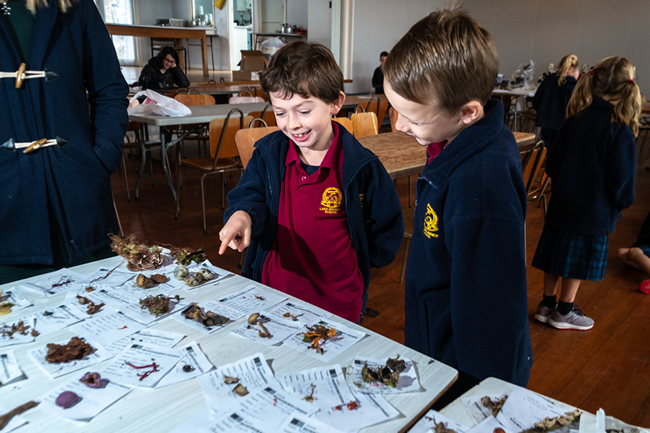 Lake Brunner School students examining collected specimens