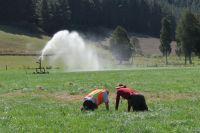 Sampling high producing grassland