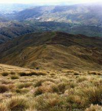 Figure 1. Main ridge of study site, Mount Cardrona. Image - BJA.