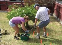 Sampling soils under a greywater application site onto a household lawn.