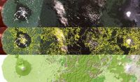 LCDB – from satellite imagery (top) to a useful map (bottom).