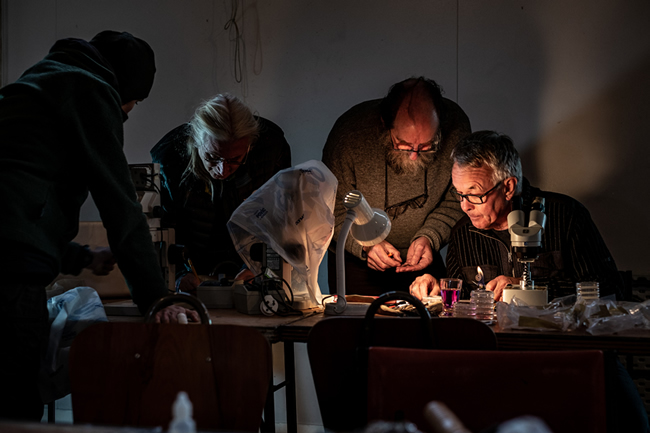 Penelope Gillette, Michael Pilkington, and John Steel from University of Otago, and Peter Johnston from Manaaki Whenua working to identify specimens
