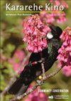 Tūī (Prosthemadera novaeseelandiae) feeding on Taiwan cherry nectar. Image - by Neil Fitzgerald.