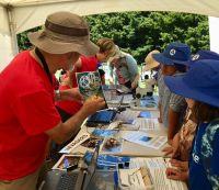 Mycologist Peter Buchanan discusses basket fungus (<em>Ileodictyon cibarium</em>) with pupils from Hamilton East school.