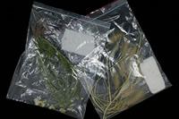 Plant identification samples