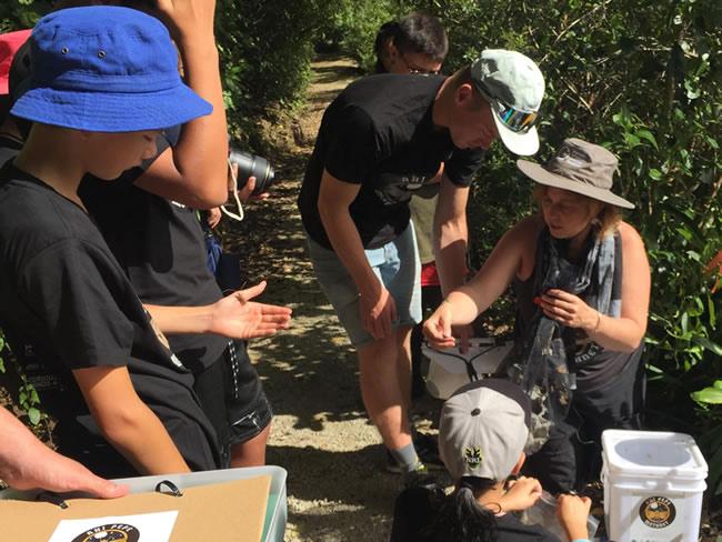 Inspecting a trap at Bushy Park Sanctuary