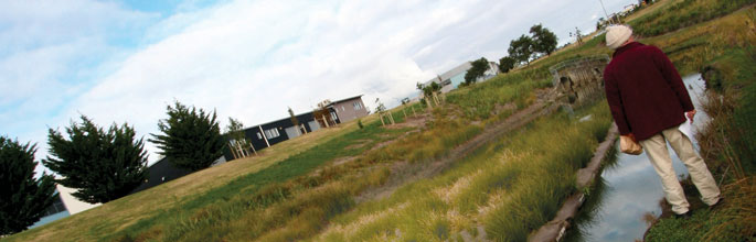 Stormwater treatment in a housing development
