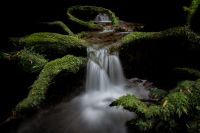 Sacred Waters. Brett Hayvice