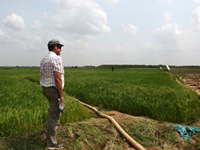 Eric McKenzie in a Cambodian rice paddy infested with <em>Cyperus iria</em>. Image - Kerry Ford