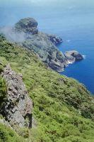 Northern slope of Manawa Tāwhi where the lone wild <em>Pennantia baylisiana</em> grows