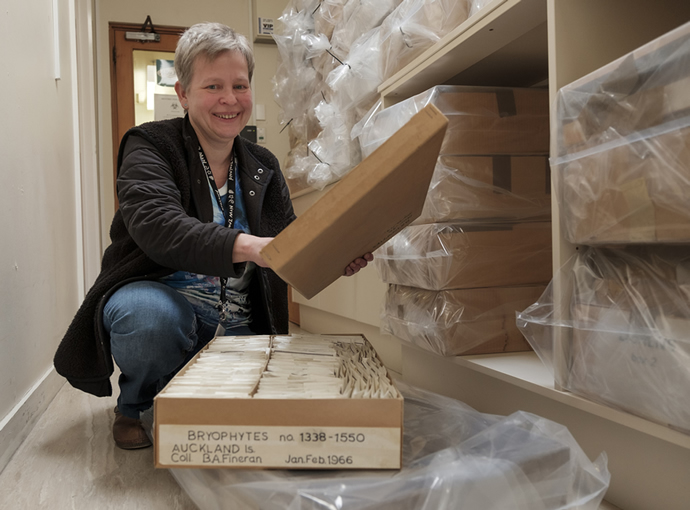 Herbarium manager Ines Schonberger with incoming boxes of specimens