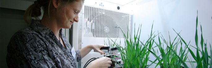 Monitoring photosynthesis in the GHG facility