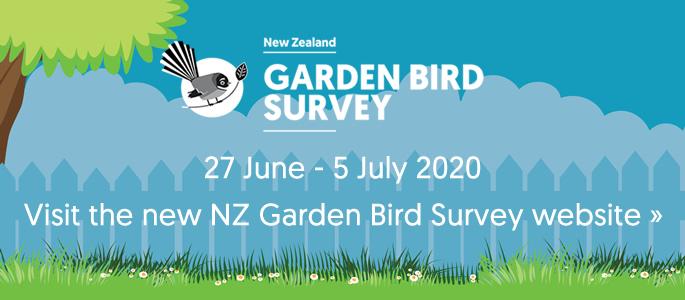 Visit the new NZ Garden Bird Survey website