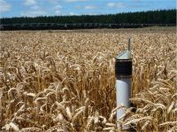 A network of soil moisture sensors automatically informs the irrigation scheduling