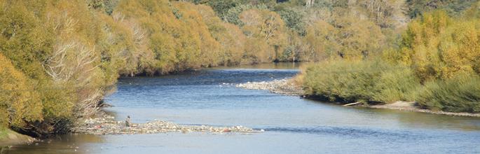 Motueka River. Image - Adrienne Farr
