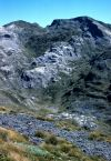 Foreground of tussockland bordering a bare calcareous boulderfield on Mt Arthur, western Nelson (Peter Williams)