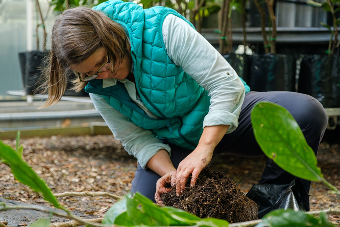 Tending plants