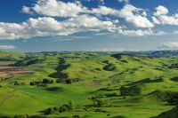 Soil quality underpins New Zealand's rural economy