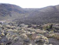 Tongariro National Park (Susan Wiser)