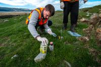 Collecting a bone marrow sample from a recently deceased rabbit